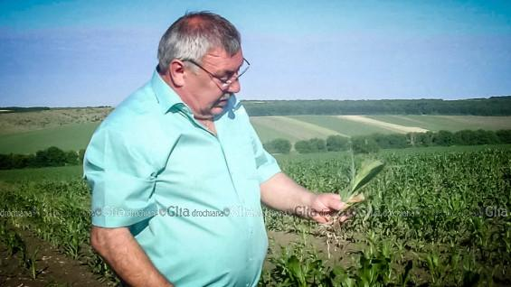 "Василий КУБЕЙ, лидер ""Кубвас-агро"""