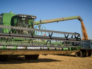 Recoltarea grâului de la Mândâc se face calitativ și în termenii stabiliți