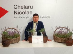Nicolae Chelaru