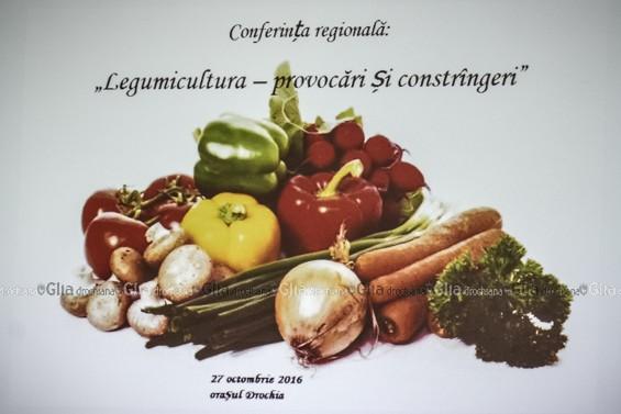 Tema conferinței