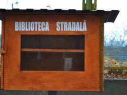 Pustie este nu doar biblioteca stradală din această imagine / Foto Nelly CIOBANU