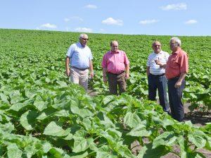 Ion NICORA (la dreapta) discută cu liderii din agricultură