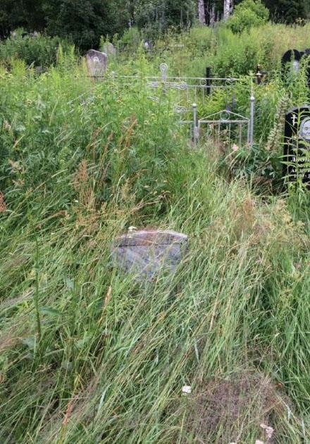 Сейчас трава высохла, а в июле было так...