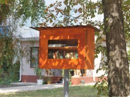 Biblioteca stradală din fața Bibliotecii publice raionale