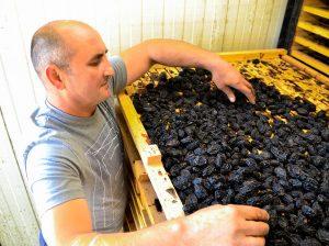 La uscătoria de fructe a lui Vasile Necula, o afacere dezvoltată cu ajutorul UE