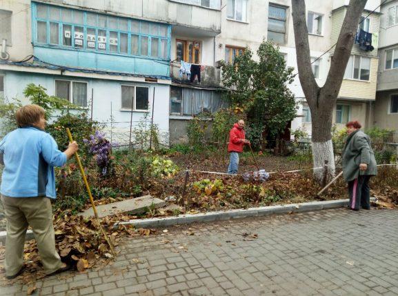 Пенсионеры убирают опавшие листья